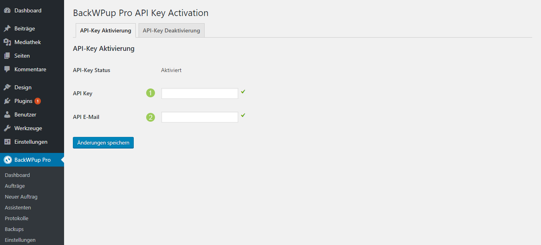 Gebe deinen Lizenzschlüssel ein, um automatische Updates zu erhalten